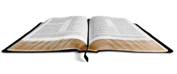 the word of God makes wise for salvation
