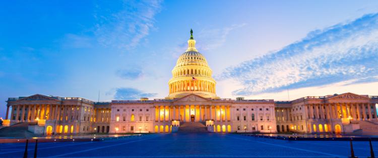 America lost, capital bldg. in DC