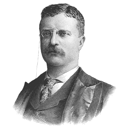 Theodore Roosevelt - US President